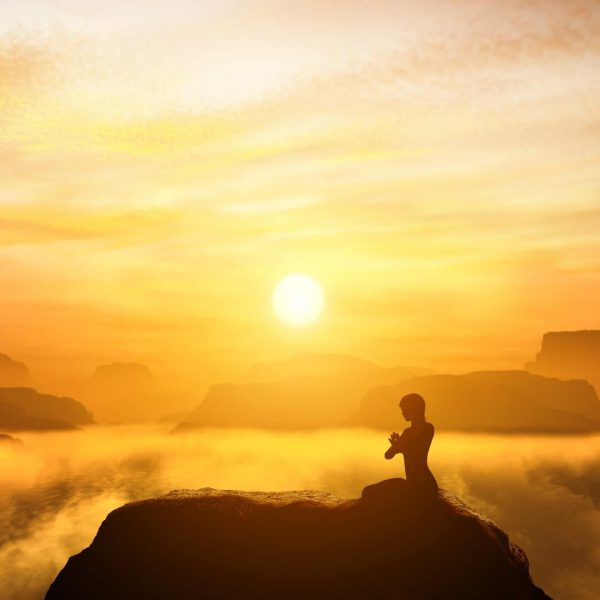Answers to your meditation challenges by Sally Kempton