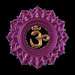 Retreat icon